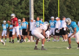 Carolina_Panthers_training_camp